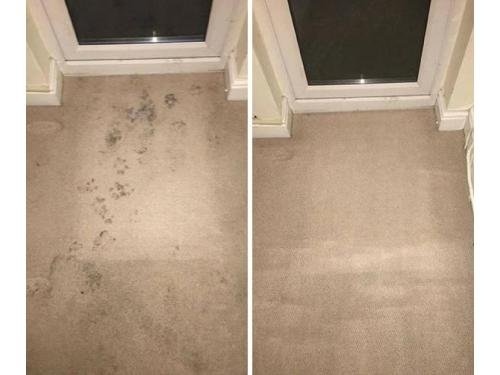 Carpet cleaning in Portsmouth