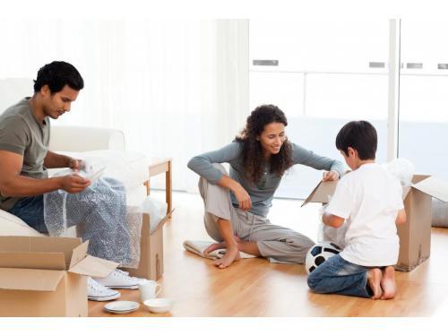 domestic removals