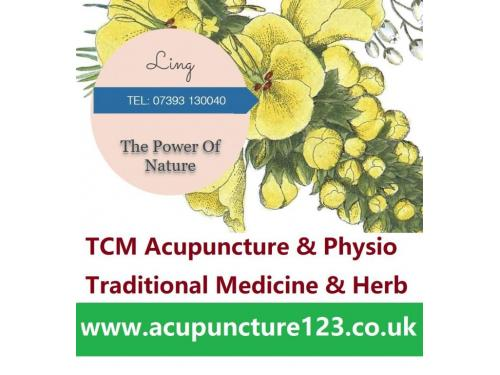 Dr Ling - TCM Acupuncture & Physio   Hertford