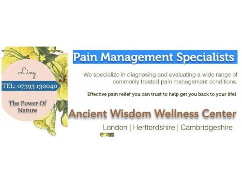 Pain Management Specialists in London   Hertfordshire   Cambridgeshire   Home Visits Available -Booking 07393 130040