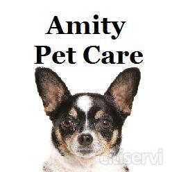 Book a Pet Taxi service, for both collection, and drop-off, for your Dog Day Care service, and receive a free Dog Walk!