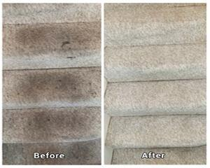 Pro Cleaners Guildford carpet cleaning and end of tenancy cleaning are our most booked services. Our clients in Guildford choose them because they go perfectly together when you need a complete and deep cleanup of your entire property. Our local teams vis